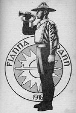 Fianna Éireann 106 Years Young Today, August 16, 2015